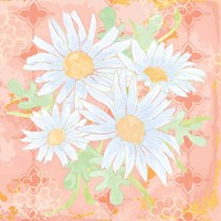 Daisy Patch Coral I Fine Art Print
