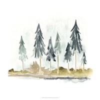 Lake Shore II Framed Print
