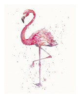 A Flamingo's Fancy Fine Art Print