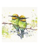 Family (Rainbow Bee Eaters) Fine Art Print
