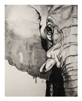 Watercolor Elephant Fine Art Print