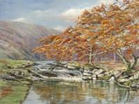 Ruscello Silvestre Fine Art Print