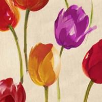 Tulip Funk (detail) Framed Print