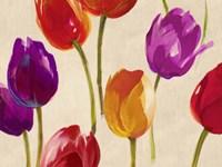 Tulip Funk Fine Art Print