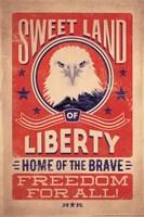 Vintage Eagle Fine Art Print
