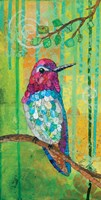 Anna's Hummingbird Fine Art Print