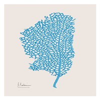 Cobalt Sea Fan Framed Print