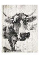 Vintage Cow Mate Framed Print