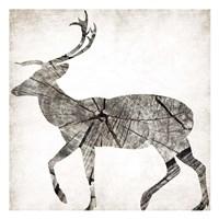 Wood Deer Mate Framed Print