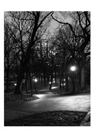Central Park Night Stroll Framed Print