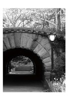 Under The Bridge Fine Art Print