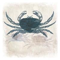 Crab Coast Vision Framed Print