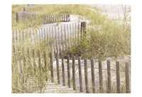 Coastal Photograpy Textured Framed Print