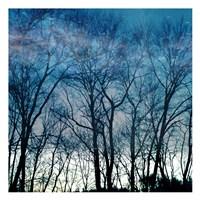 Blue Mountain Framed Print