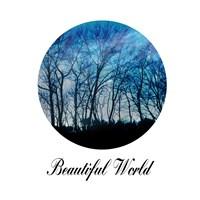 Beautiful World Framed Print