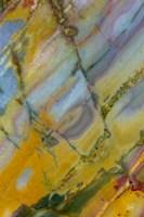 Crayola Jasper from Nevada Fine Art Print