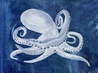Cephalopod I Framed Print