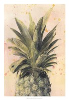 Pineapple Delight I Framed Print