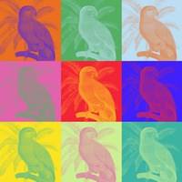 Parrot Party I Framed Print