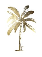 Gold Foil Tropical Palm II- Metallic Foil Framed Print