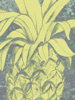 Kona Pineapple I Fine Art Print