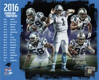 Carolina Panthers 2016 Team Composite Fine Art Print