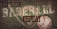 Eat, Sleep, Baseball, Repeat Fine Art Print