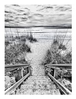 Follow the Steps Fine Art Print