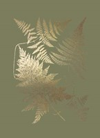 Gold Foil Ferns III on Mid Green - Metallic Foil Framed Print