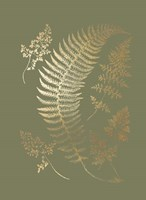 Gold Foil Ferns IV on Mid Green - Metallic Foil Framed Print