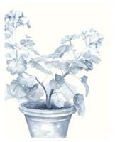 Blue Geranium I Framed Print