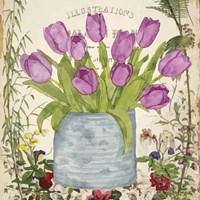 Vintage Tulip Can II Framed Print