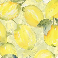 Lemon Medley II Framed Print