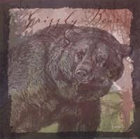 Bear Fine Art Print