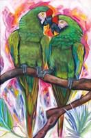 Two Parrots Fine Art Print