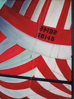 Red, White and Blue Spinnaker Fine Art Print