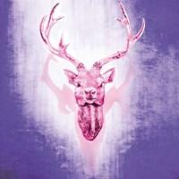 Purple Deer Framed Print