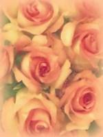 Vintage Roses Fine Art Print