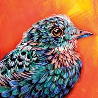 Interference Feathers Fine Art Print