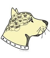 Canine Phrenology Framed Print