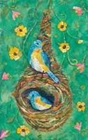 Teardrop Nest Fine Art Print