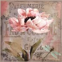 Jardin Rouge I Framed Print