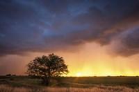 Stormy Sunset Fine Art Print
