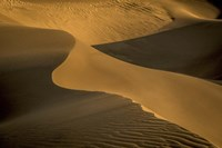 Sand Dunes Fine Art Print