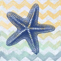 Chevron Star Fish Fine Art Print