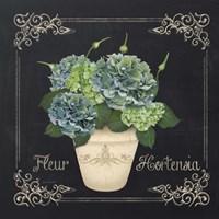 Fleur Hortensia Framed Print