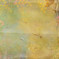Color Changed Card Fine Art Print