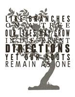 Family Tree Branches Fine Art Print