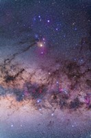 Scorpius with parts of Lupus and Ara regions of the southern Milky Way Fine Art Print