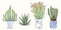 Four Succulents I Fine Art Print